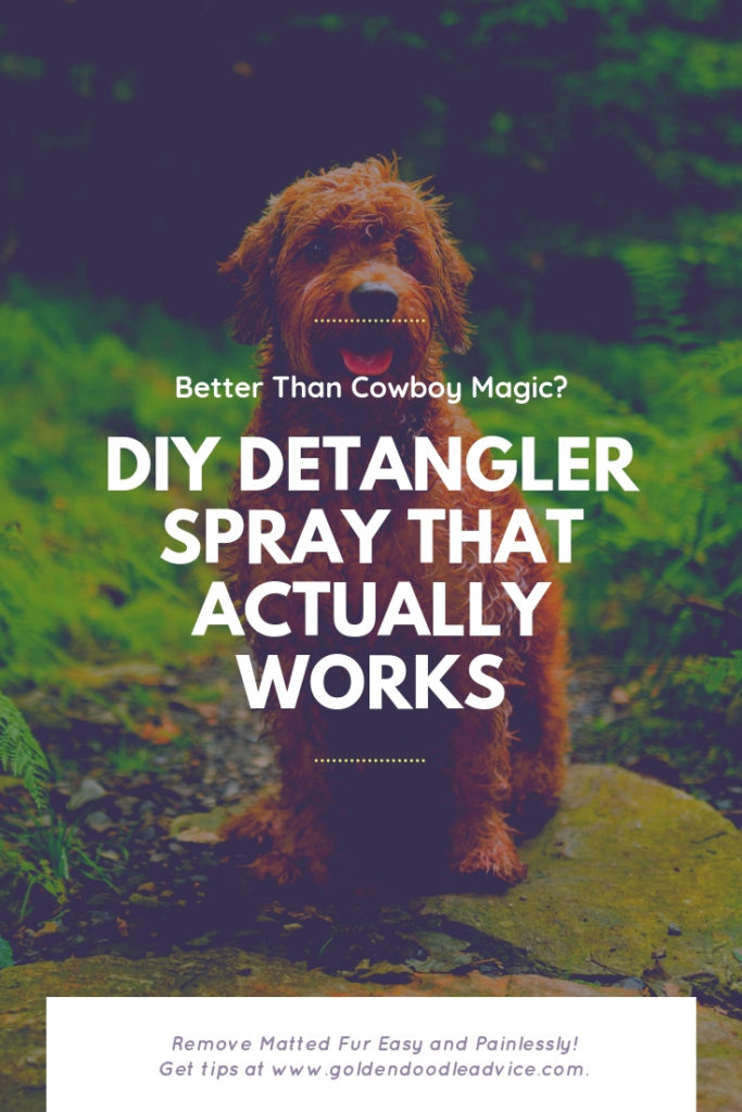 Better Than Cowboy Magic? A DIY Detangler Spray That Actually Works. Try this formula for excellent results.