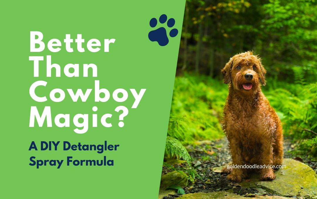 Better than Cowboy Magic? This DIY Detangler Spray is AMAZING! DIY Detangler spray formula for dogs goldendoodles cowboy magic