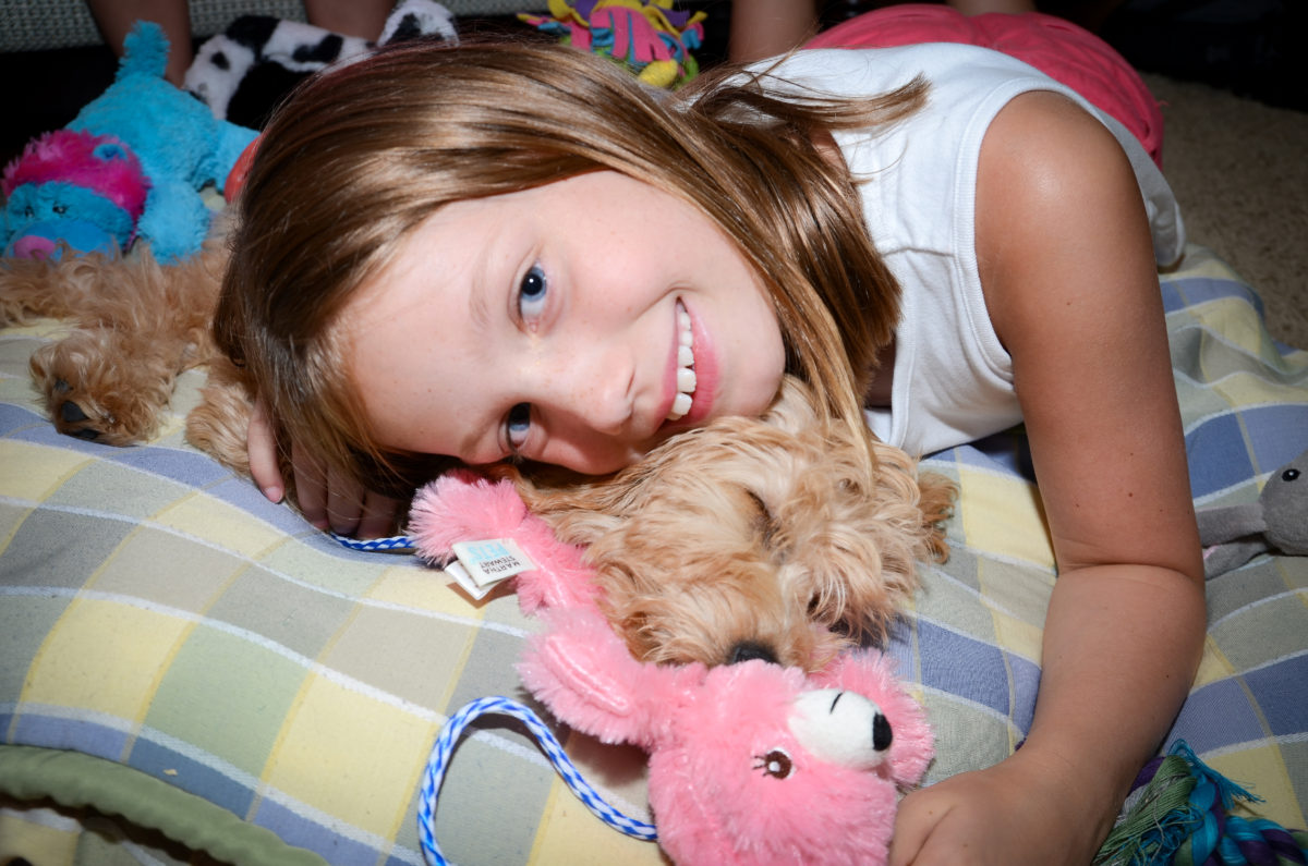 Are Goldendoodles Good with Kids? A Guide for Parents #dogs, #puppies, #doodles