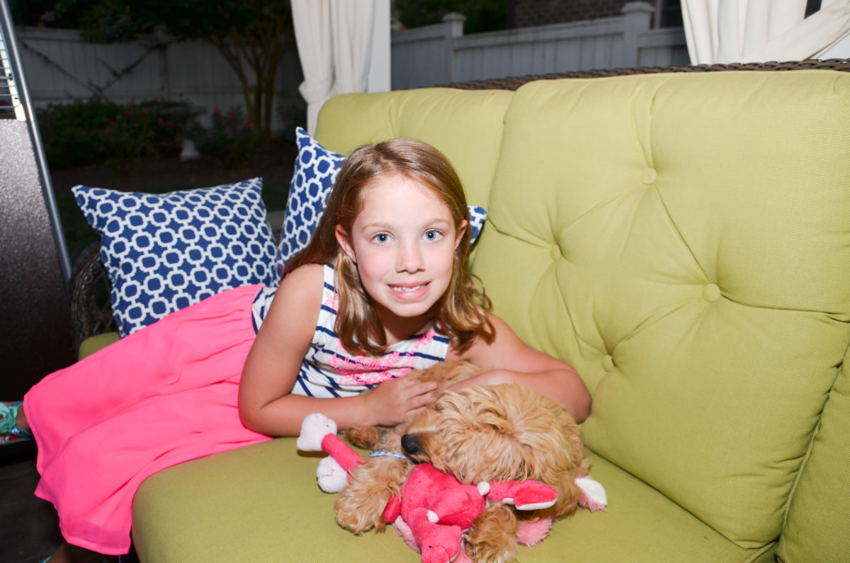Are Goldendoodles Good with Kids? A Guide for Parents