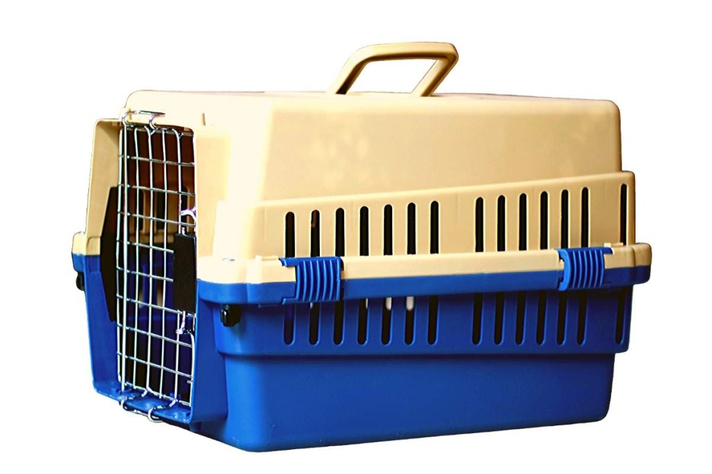 The Importance of Crate Training, dog crate training a puppy #dogs, #puppy, #doodle
