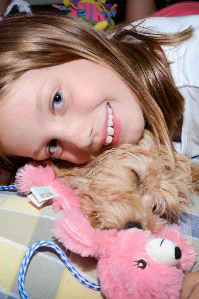 Are Mini Goldendoodles Lapdogs?