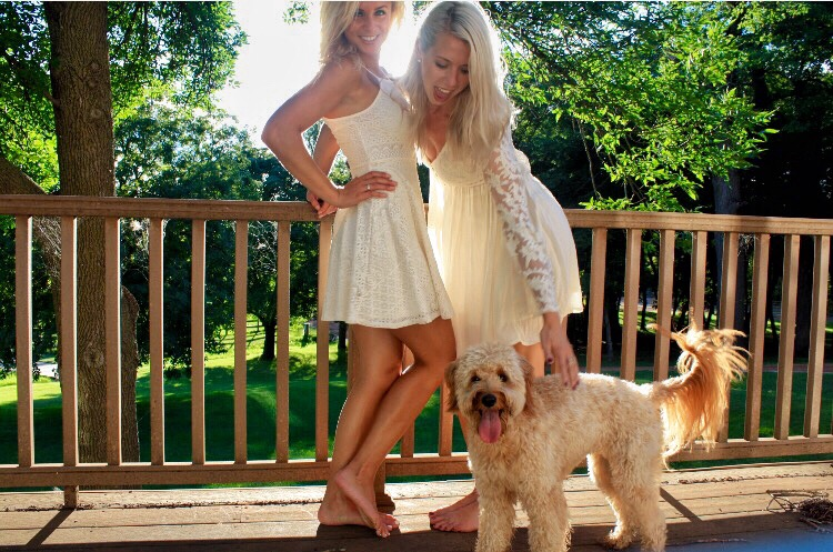 Why Does My Goldendoodle Lean On Me? #dogs #puppies #goldendoodles #doodles