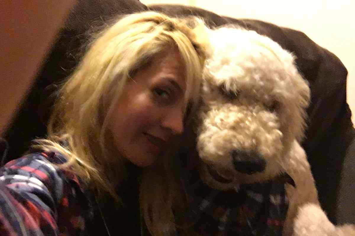 7 Reasons Your Goldendoodle Barks at You